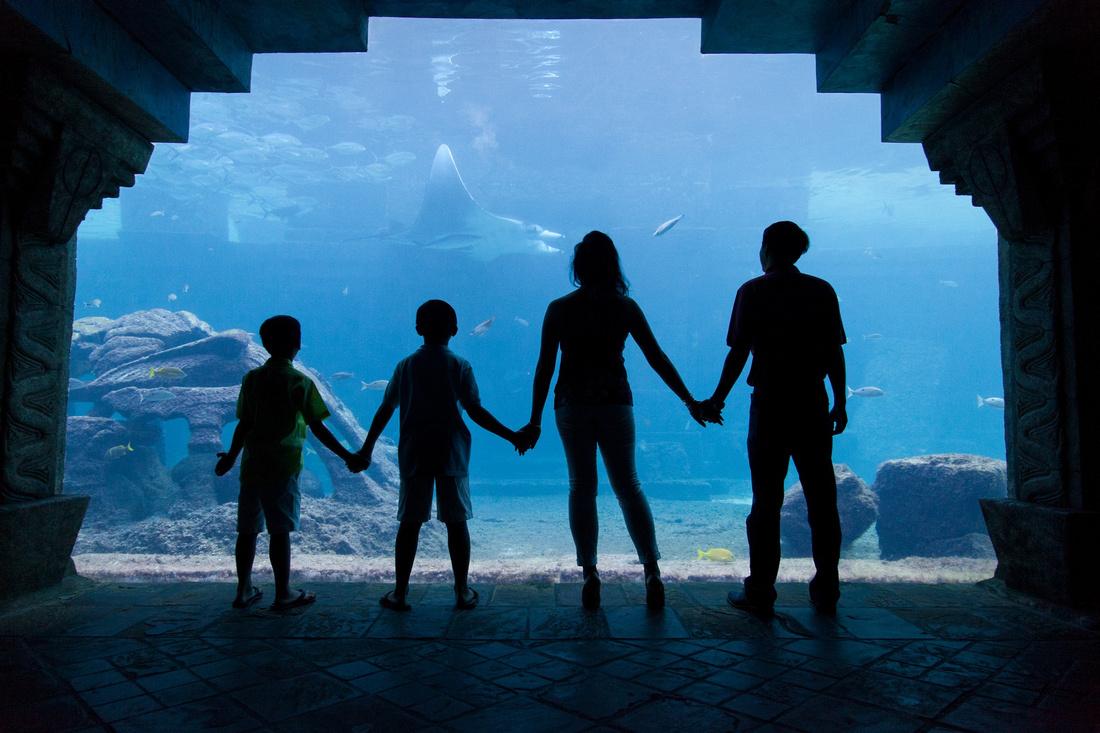 Bahamas Family Photographer